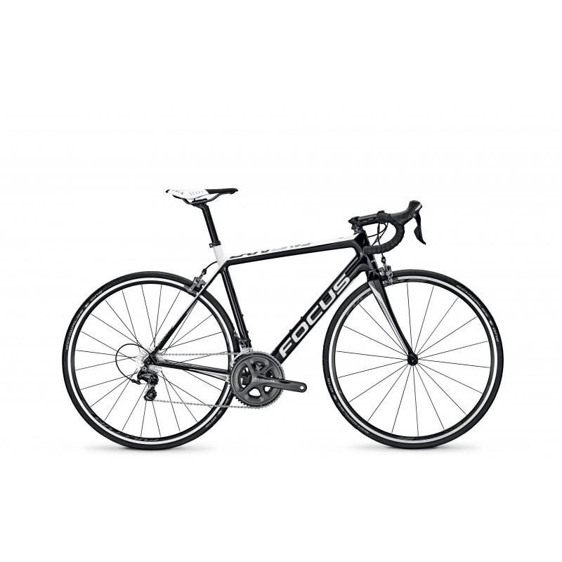 Focus Bicicletta Cayo Ultegra