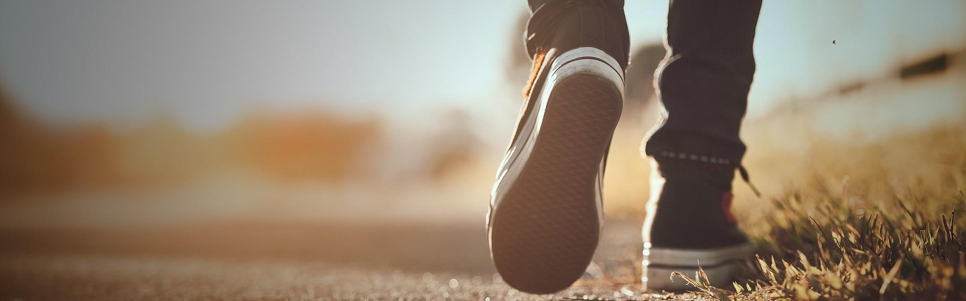 save off ac9d8 12d5d Articoli sportivi per sneaker - Acquista online su Sportland